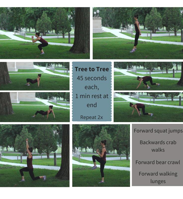 Fun & Fresh Park Workout: Set #2 - Tree-to-Tree
