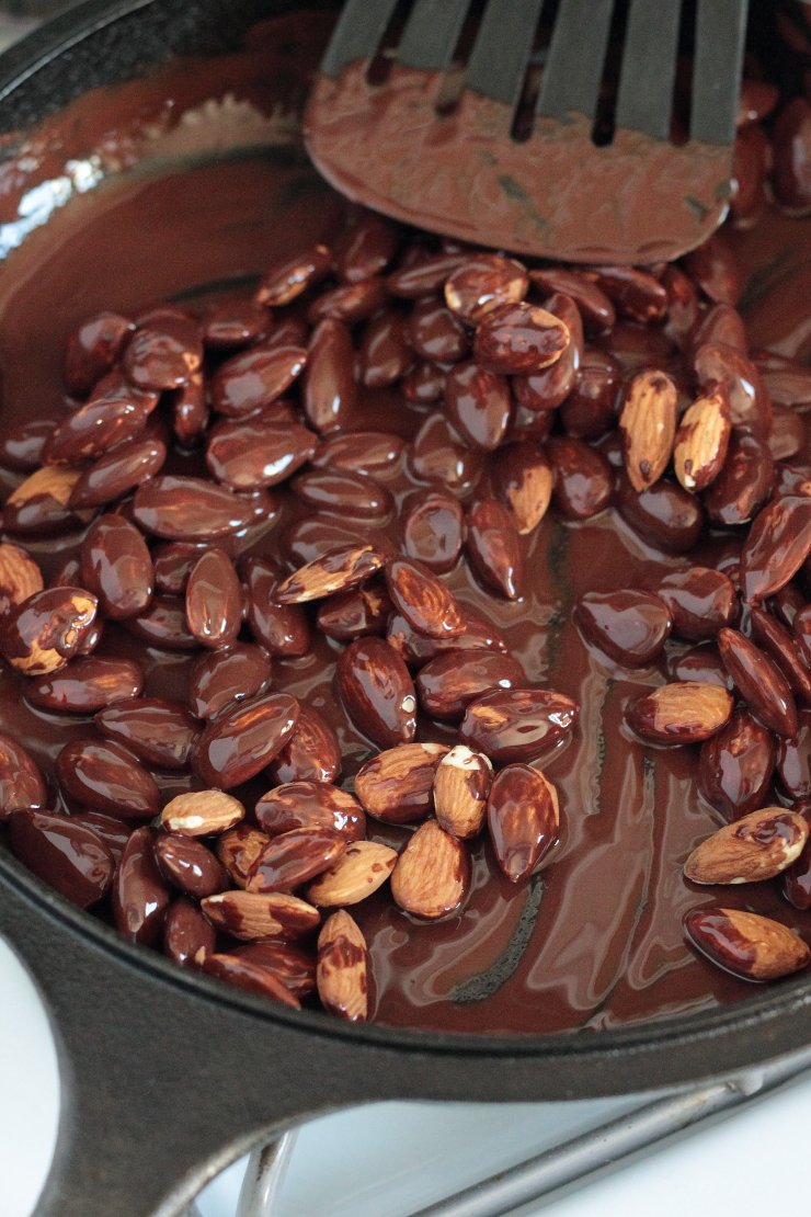 Almonds covered in decadent dark chocolate make an amazing healthy snack!