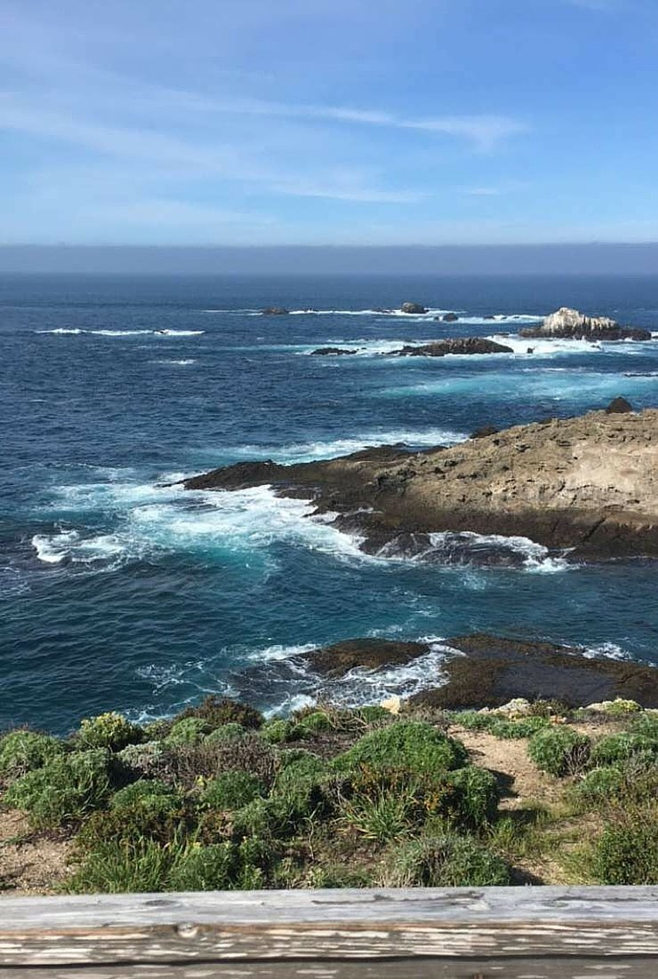 Point Lobos State Reserve in Monterey has some amazing views and trails that are stroller accessible!