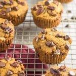 Paleo Chocolate Pecan Pumpkin Muffins